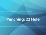 Punching: 22 Hole