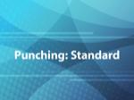 Punching: Standard